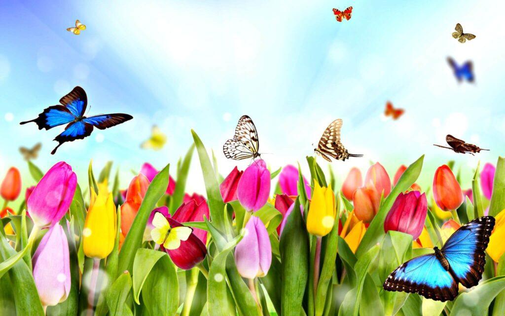 Obrazek posiada pusty atrybut alt; plik onazwie wiosenne-kolorowanki-dla-dzieci--1024x640.jpg